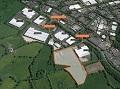 Feasibility Tree Surveys Isle of Wight and Hampshire